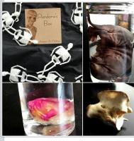 Pandora s Box A Curiosity Shop-il_570xn.689526757_fgfj-thumb