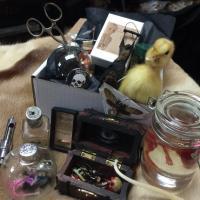 Pandora s Box A Curiosity Shop-il_570xn.689526761_jdxy-thumb